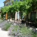 boerderij in de provence-luberon