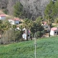 private bungalow in natuurgebied bergen